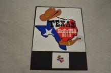 2012 Texas Pin