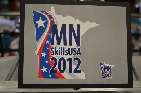 2012 Minnesota Pin